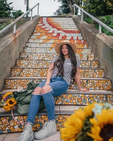 Mosaic Steps SF