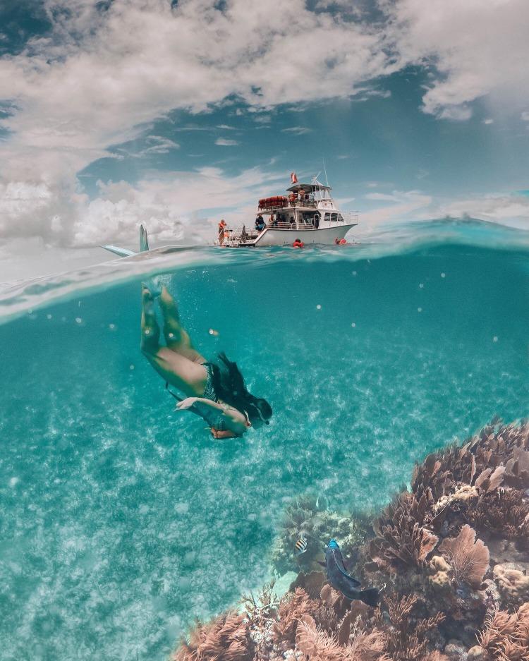 John Pennekamp Snorkeling